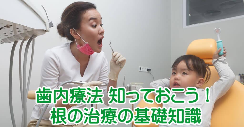 歯の根の治療の基礎知識